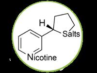 salt mini
